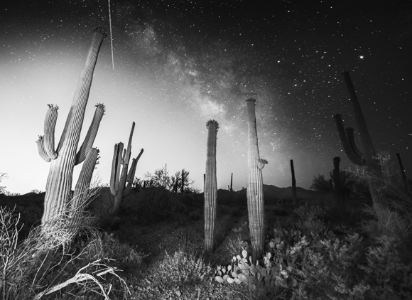 Milky Way over Saguaro National Park