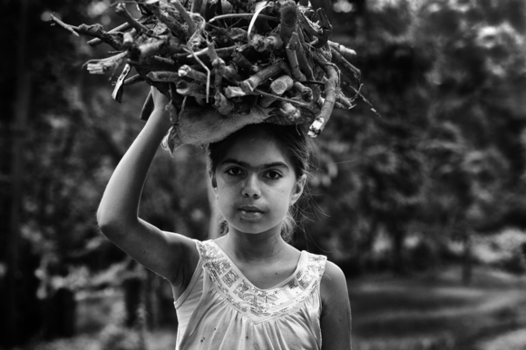 Young Girl Collecting Wood