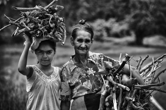 A Young Girl and her Grandmother Collecting Wood