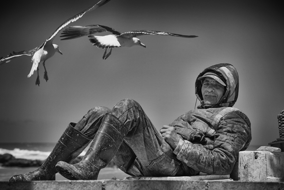 The Fisherman And The Seagulls