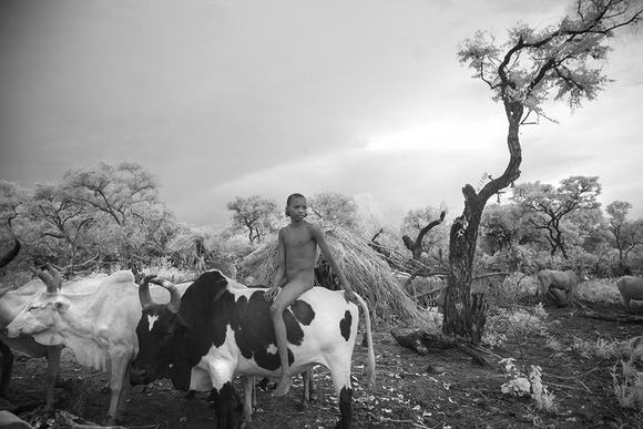 Cattle Boy In The Omo Valley