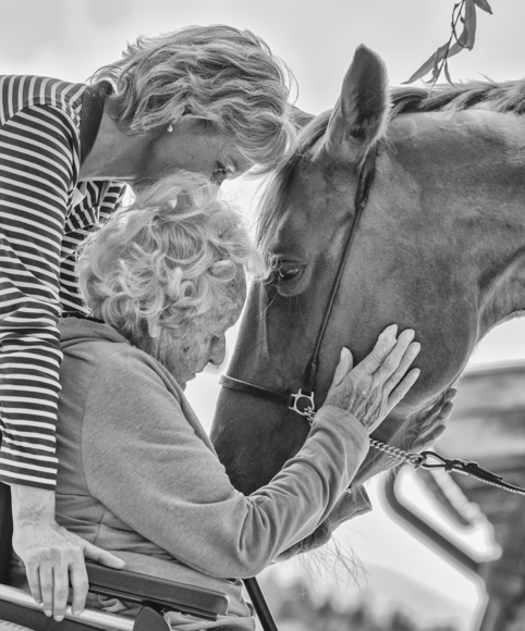 Elderly and Equine Soul