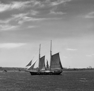Between the Sails