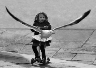 Girl and Seagull