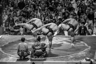 The Art of Sumo