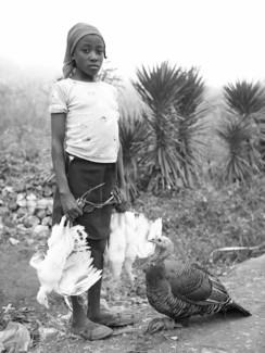 Haitian girl with Poultry in Sequin