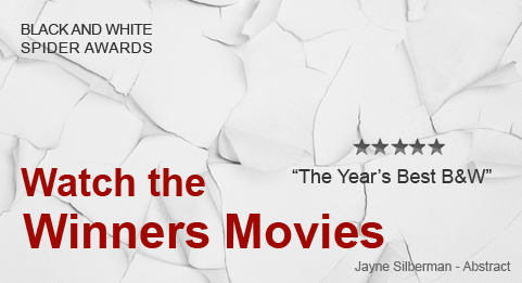 Winners Movie