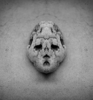 Portrait of a Stone