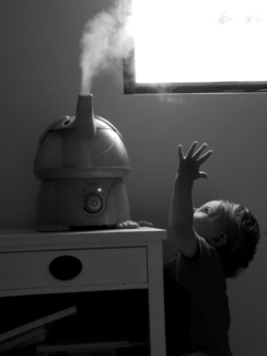 The Humidifier