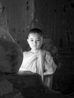 Young Monk - Myanmar