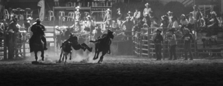 Night Rodeo