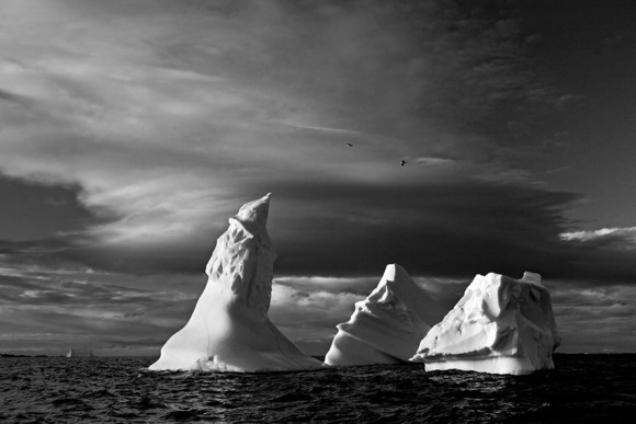 Icebergs and clouds, Fogo Island