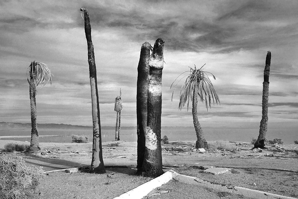 Salton Sea Resort