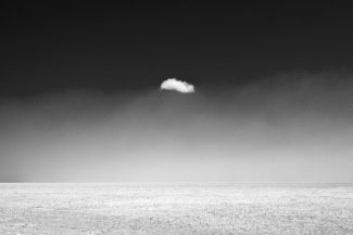 Cloudy Day in Etosha