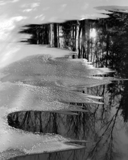 Frozen Reflections