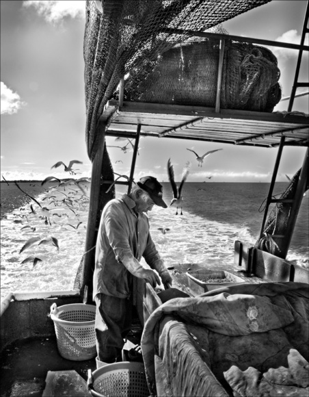 Shrimper at Sea