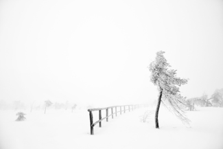 Winter IV