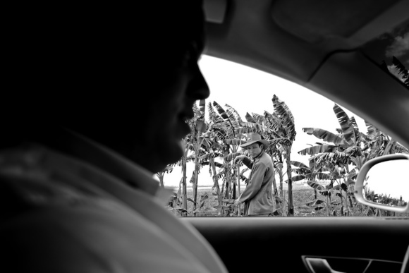 Rice Crop Workers B & W