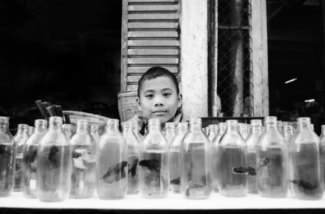 Boy Sells Fish in a Bottle