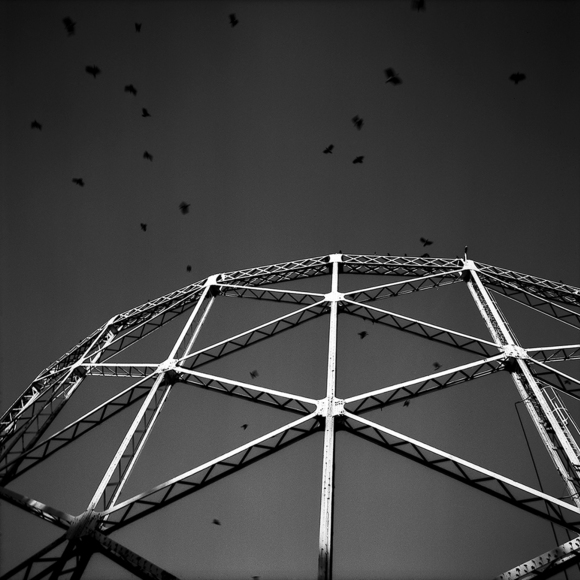 The Birds Flying Over Ex-gasometers, Milan