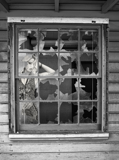 Girl in a Broken Window
