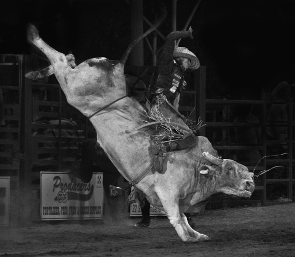 Night Bull Riding