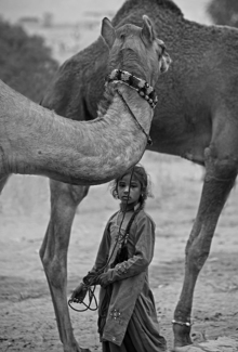 Child camel herder