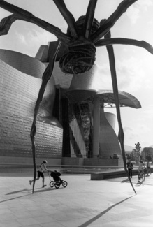 Fear Of A Spider, Guggenheim Museum, Bilbao, Spain