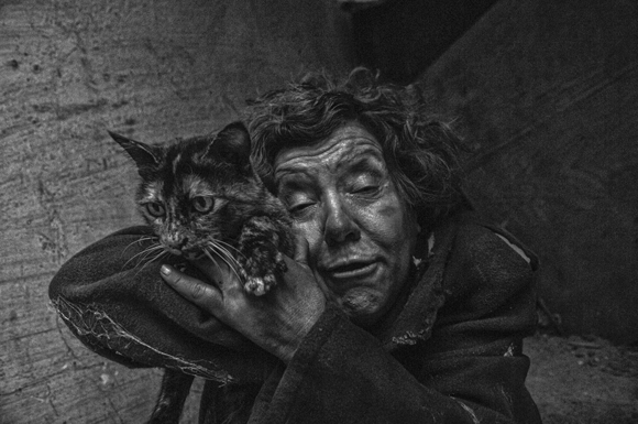 Homeless cat lover