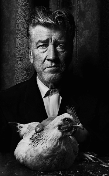 David Lynch & Kura the chicken