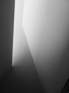 Shadows in Stairwell