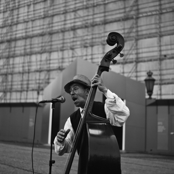 The Bass Violinist