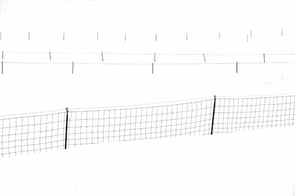 4 fence lines
