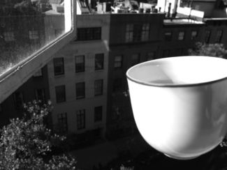 Cup Out Window
