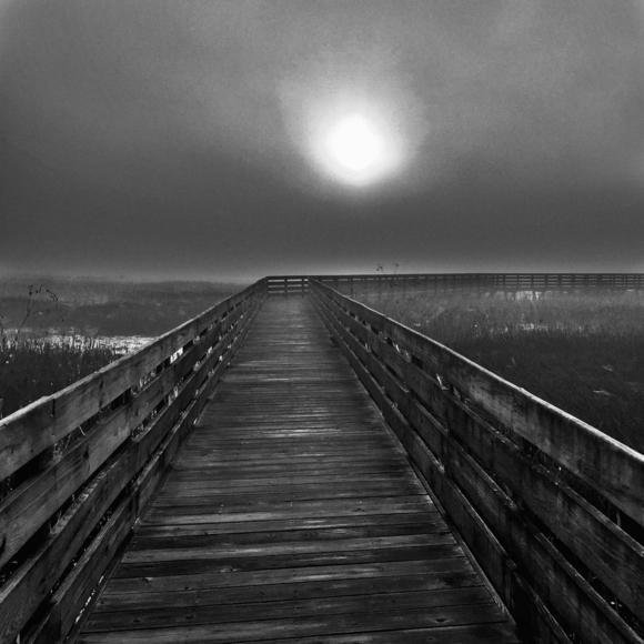 Mysterious Boardwalk
