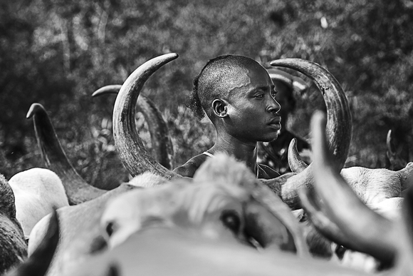 The Bull Jumper, Omo Valley, Ethiopia